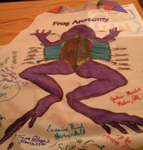 My Froggy Apron!